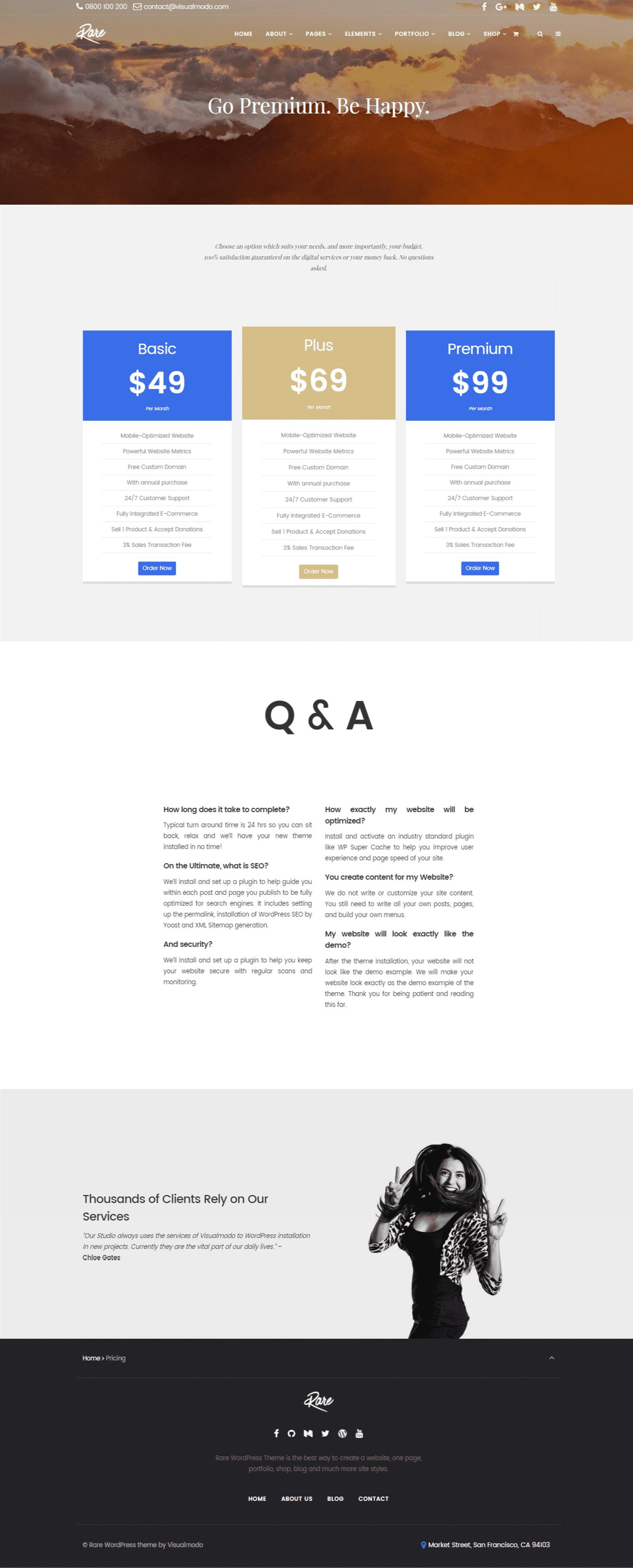 Rare WordPress Theme Screenshots from demonstrative site