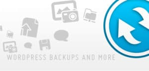 Best WordPress Backup Plugins 3. BackWPUp