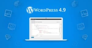 WordPress 4.9 Update Changes