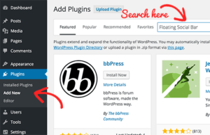 What is a WordPress Plugin?