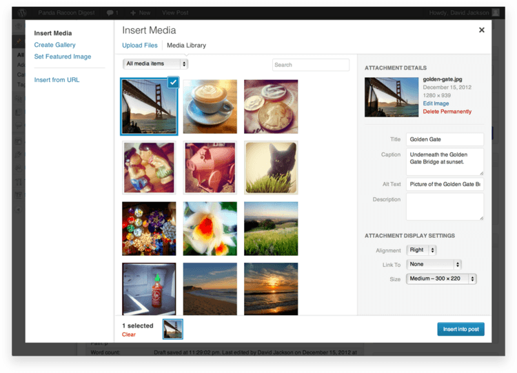 Adding WordPress Images To Posts Or Pages