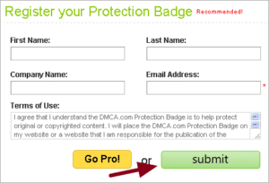 How To Use DMCA Badge To Protect WordPress Site?