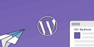 How to Download WordPress?