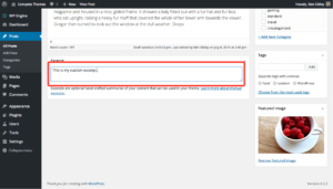How to Customize WordPress Post Excerpt