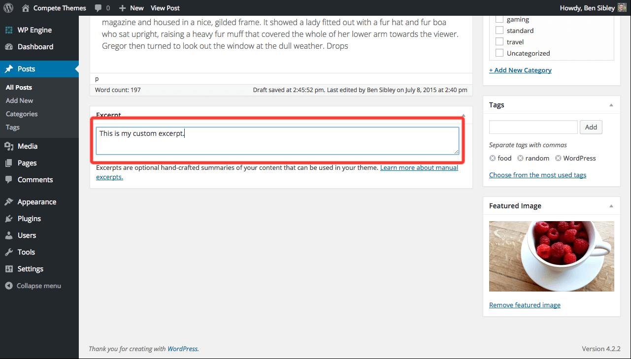 How to Customize WordPress Post Excerpt