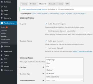 Plugin Settings Page - WooCommerce WordPress Plugins