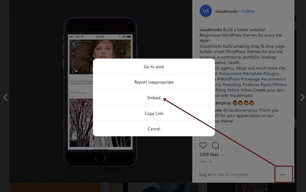 Embed Instagram Photos In WordPress Posts