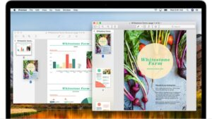 Tips for Using PDFs on Web Pages