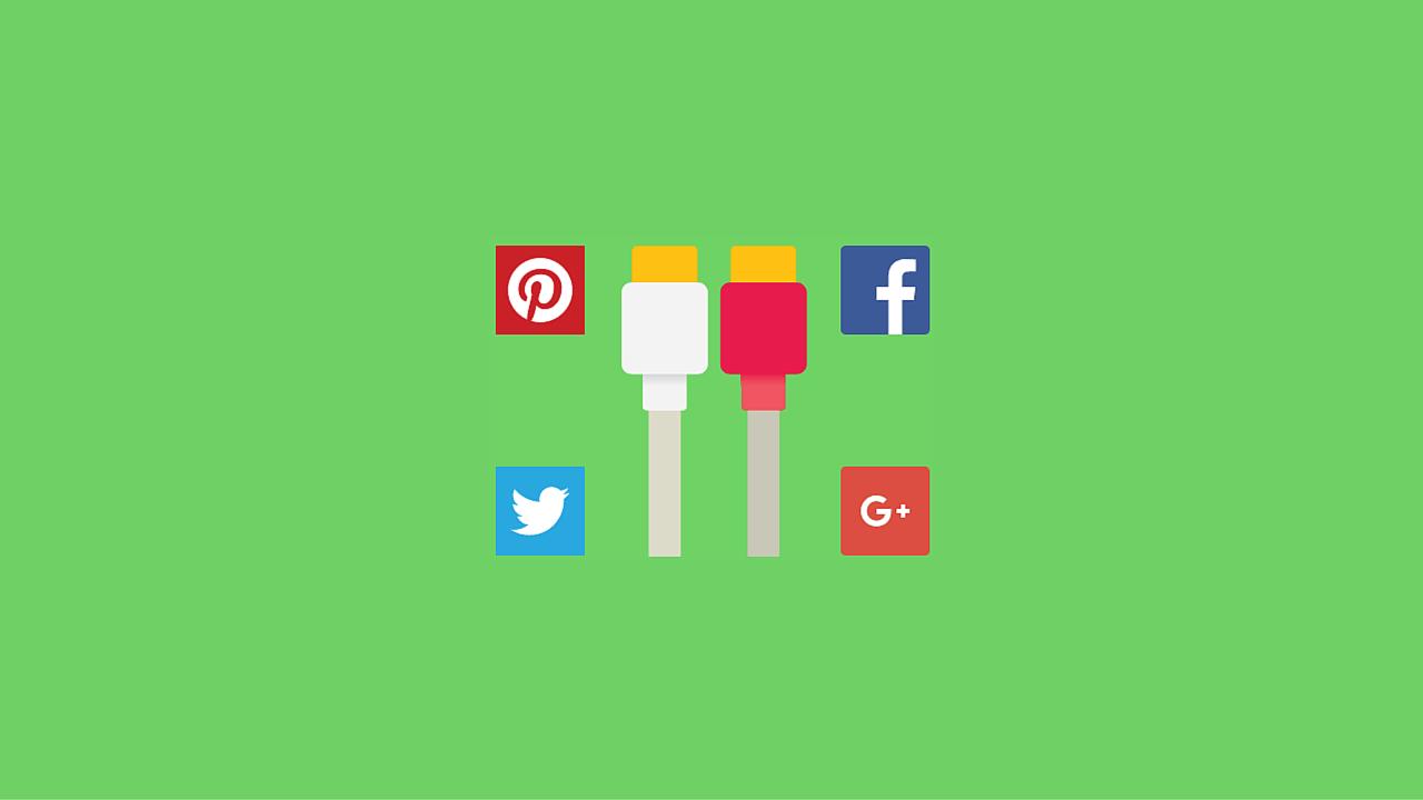 WordPress Social Networks Widgets Plugins 1