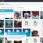 WordPress Multisite Media Sharing