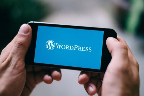 Effective WordPress Web Design Tips To Follow ASAP
