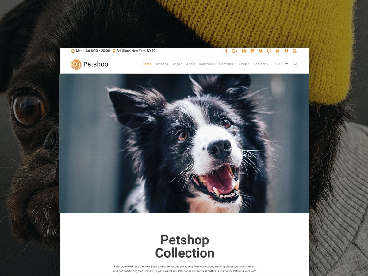 Petshop WordPress Theme – Responsive Pets Site Builder
