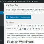 Slug Usage Best Practices And Optimization Tips