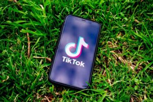 Top WordPress TikTok Plugins