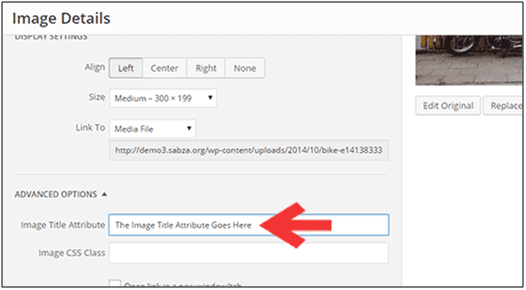 Use Alt Tags: Visual Content Creation Tips